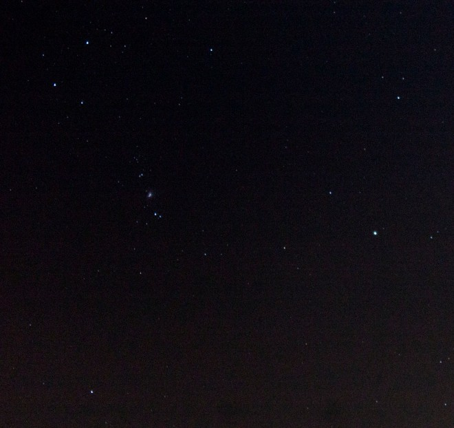 The Orion constellation on New Year's Eve